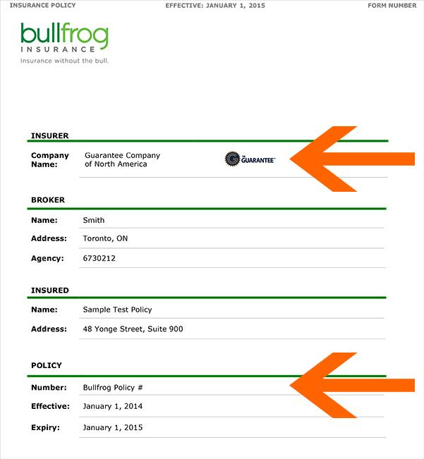 Bullfrog insurance claim